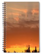 Pink Rays And Orange Skies Spiral Notebook