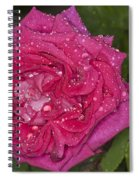 Pink Rose Wendy Cussons With Raindrops Spiral Notebook