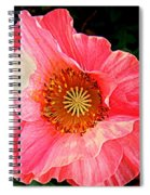 Pink Shirley  Spiral Notebook