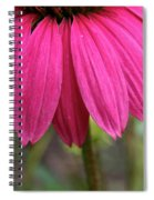 Pink Skirts Spiral Notebook