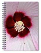 Pink Swirl Hibiscus Spiral Notebook