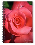 Pink Tea Rose Spiral Notebook