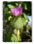 Pink Top Spiral Notebook