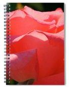 Pink Touch Of Class Petals Spiral Notebook