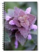 Pink Velvet Spiral Notebook
