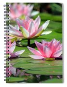 Pink Water Lilies Spiral Notebook