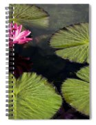 Pink Water Lily I Spiral Notebook