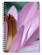 Pink Water Lily Macro Spiral Notebook