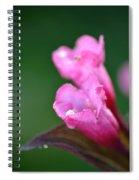Pink Weigela Spiral Notebook