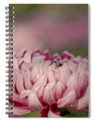Pinky Swear Spiral Notebook
