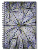 Pins And Needles Spiral Notebook
