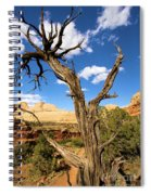 Pinwheel Tree Spiral Notebook