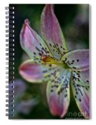 Pistil Powered By Stamen Spiral Notebook