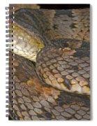 Pit Viper Spiral Notebook