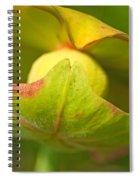 Pitcher Plant Flower Spiral Notebook