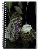Pitcher Plant Inside The National Orchid Garden In Singapore Spiral Notebook