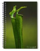 Pitcher Plants 2 Spiral Notebook
