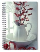 Pitcher With Red Berries  Spiral Notebook