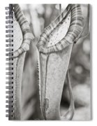 Pixie Hammock Spiral Notebook
