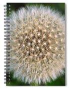 Planet Dandelion Spiral Notebook