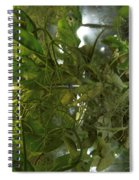 Plant Growth Experiment, Iss Spiral Notebook