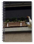 Plants And Animal Figures In The Balcony Of A Building In Lucern Spiral Notebook