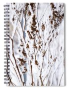 Plants In Winter Spiral Notebook