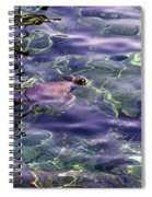 playing at Crete Spiral Notebook