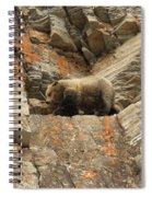 Playing Mountain Goat Spiral Notebook