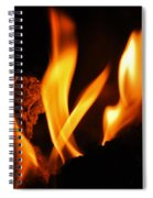 Playing With Fire I Spiral Notebook