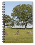 Pleasant Hillside Spiral Notebook