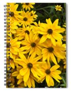 Please Don't Eat The Daisies Spiral Notebook