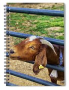 Please Exonerate Me - Billy Goat Spiral Notebook