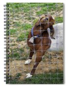 Please Exonerate Me 2 - Billy Goat Spiral Notebook
