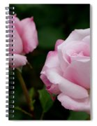 Pleasurable Pink Spiral Notebook