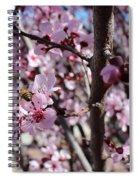 Plum Blossoms 6 Spiral Notebook