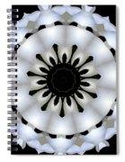 Plumeria 4 Spiral Notebook