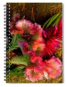 Plumes Spiral Notebook