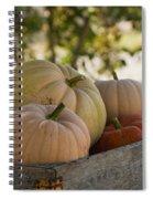 Plump And Purdy Pumpkins Spiral Notebook