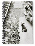 Poignancy Spiral Notebook