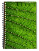 Poinsettia Leaf IIi Spiral Notebook