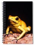 Poison Dart Frog Spiral Notebook