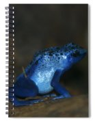 Poisonous Blue Frog 03 Spiral Notebook