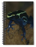 Poisonous Frog 01 Spiral Notebook
