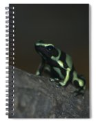 Poisonous Green Frog 03 Spiral Notebook