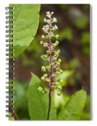 Poke Sallet Blossom Spire - Phytolacca Acinosa  Spiral Notebook