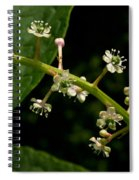 Poke Sallet Flowers Spiral Notebook