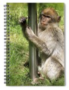 Pole Dancing Macaque Style Spiral Notebook