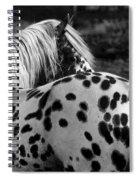 Polka Dotty Spiral Notebook