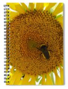 Pollen Hunter Spiral Notebook